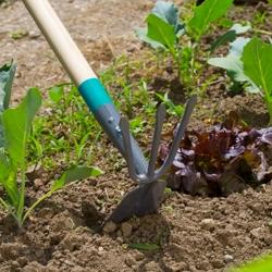 Ручной инструмент для работы с почвой, снегом