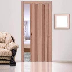 Пластиковые двери (гармошка)