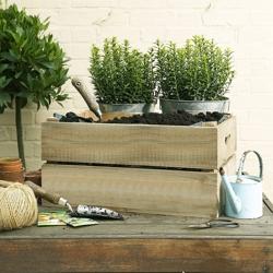 Стеллажи, ящики, лавки и прочее для сада